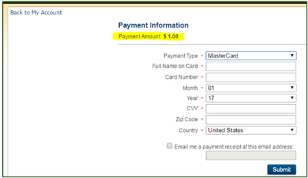 selecting items when paying fines online