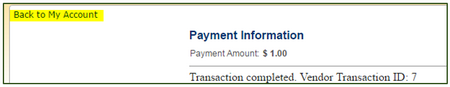 entering payment info when paying fines online
