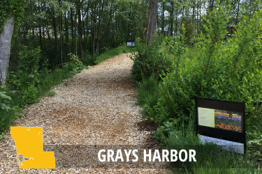 Grays Harbor