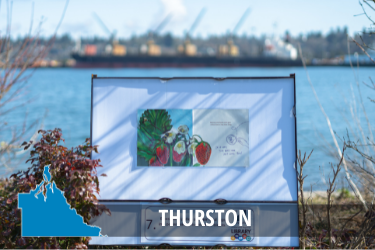 Thurston County StoryTrails