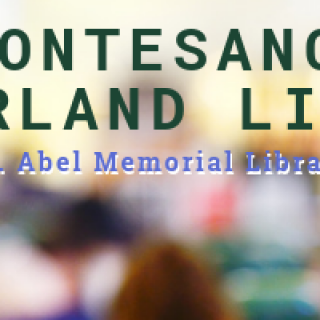 Montesano Timberland Library